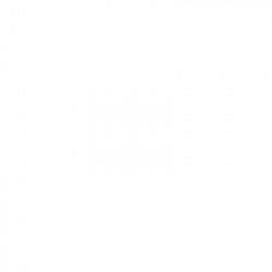 TK510 Toner Kyocera Generico 0T2F30EU Negro